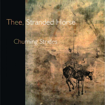 THS-churning strides
