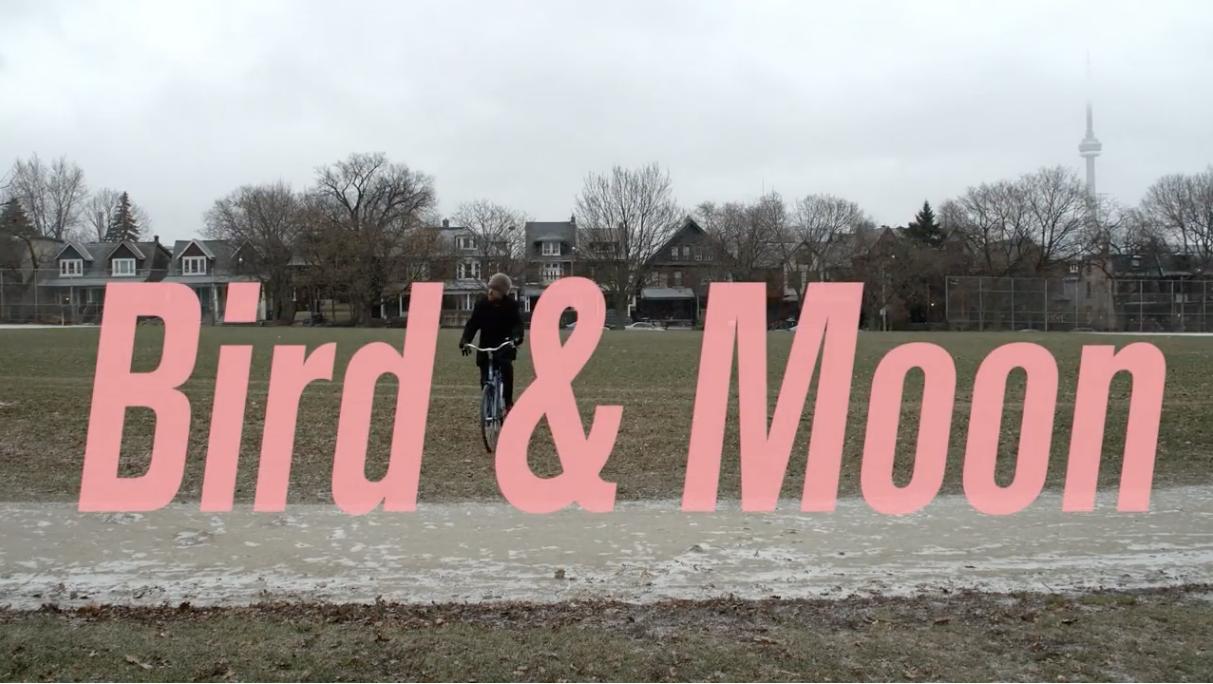 'Bird & Moon' (video by Eric Cazdyn, 2018)